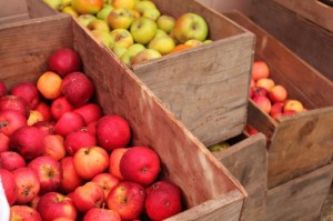 Boxes of organic apples